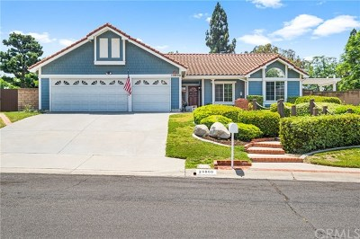 Yorba Linda Single Family Home For Sale: 20800 Paseo Alto