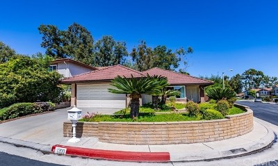 Fullerton Single Family Home For Sale: 1200 Cranbrook Place