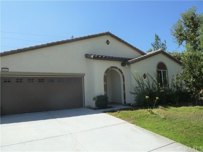 Lake Elsinore Single Family Home For Sale: 53185 Trailing Rose Drive