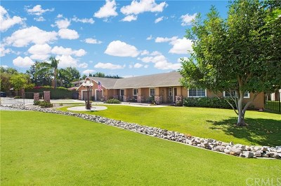 Yorba Linda Single Family Home For Sale: 4309 Avocado Avenue