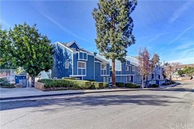 Brea Condo/Townhouse For Sale: 205 S Redwood Avenue #24