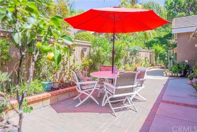 Anaheim Hills Single Family Home For Sale: 862 S Sapphire Lane