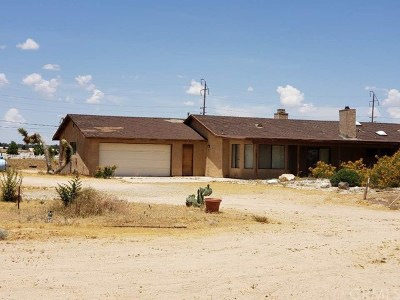 Apple Valley Single Family Home For Sale: 9191 Deep Creek Road