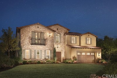 Yorba Linda Single Family Home For Sale: 4081 Yale Street