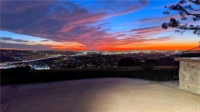 Yorba Linda Single Family Home For Sale: 4795 Sky Ridge Drive