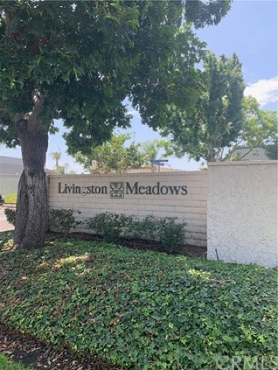 Condo/Townhouse For Sale: 14087 Livingston Mdws