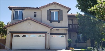 Lake Elsinore Single Family Home For Sale: 41065 Sunsprite Street