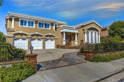 Anaheim Single Family Home For Sale: 1035 S Sunstream Lane