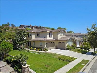 Anaheim, Brea, Buena Park, Fullerton, La Habra, Placentia, Chino, Chino Hills, Ontario Single Family Home For Sale: 3887 Whistle Train Road