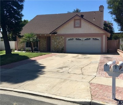 Tustin Single Family Home For Sale: 13841 Marshall Lane