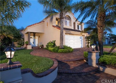 Mission Viejo Single Family Home For Sale: 22172 Wayside