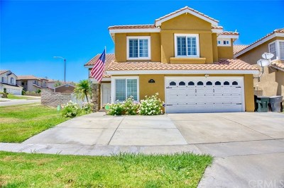Corona Single Family Home For Sale: 1180 Via Viento Lane