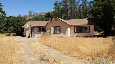 Hemet Single Family Home For Sale: 33241 Hwy 74