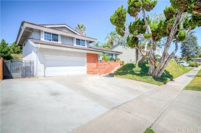 Fullerton Single Family Home For Sale: 1649 Canyon Drive