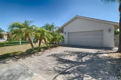 Yorba Linda Single Family Home For Sale: 16892 Wabash Avenue