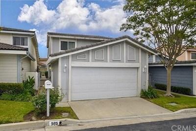 Anaheim Hills Single Family Home For Sale: 985 S Park Rim Circle
