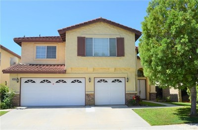 Chino Hills Single Family Home For Sale: 4533 Torrey Pines Drive