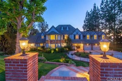 Anaheim Single Family Home For Sale: 265 S Owens Drive