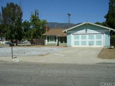 San Bernardino Single Family Home For Sale: 1666 Windsor Street