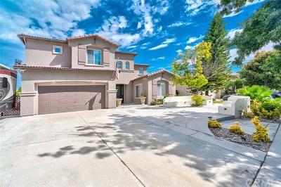 Corona Single Family Home For Sale: 1155 Dalgety Street