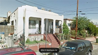 Los Angeles Multi Family Home For Sale: 739 S Mathews Street