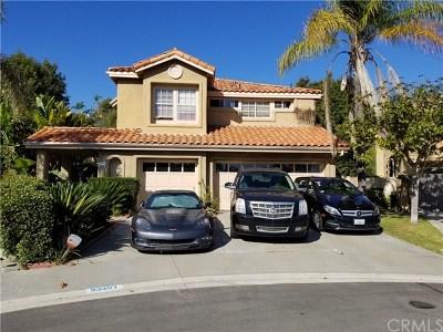 Orange County Single Family Home For Sale: 23301 Vista Carillo