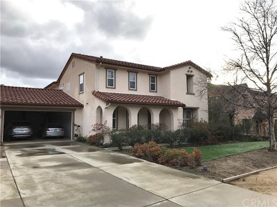 Shadow Hills Single Family Home For Sale: 10575 Lost Trail Avenue