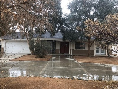 Apple Valley Single Family Home For Sale: 16815 Neenach Road