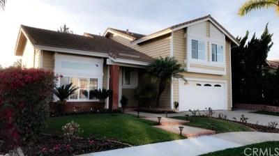 Carlsbad Single Family Home For Sale: 4631 Telescope Avenue