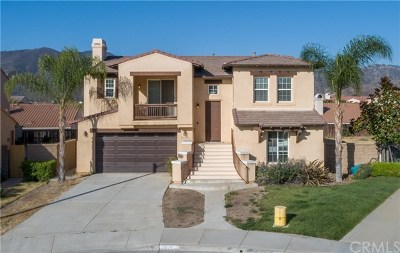 Wildomar Single Family Home For Sale: 21699 Amaryllis Court