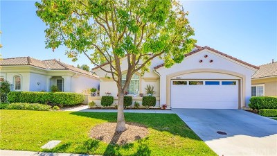 Murrieta Single Family Home For Sale: 40204 Via Marisa