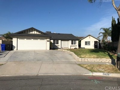 Fontana Single Family Home For Sale: 7625 Lombardy Avenue