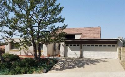 Mission Viejo Single Family Home For Sale: 26991 El Ciervo Lane