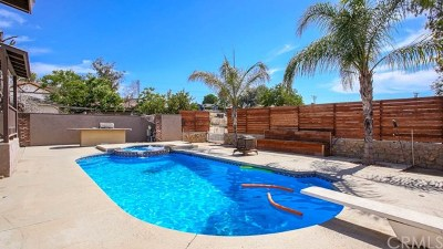 Norco Single Family Home For Sale: 2154 Corona Ave