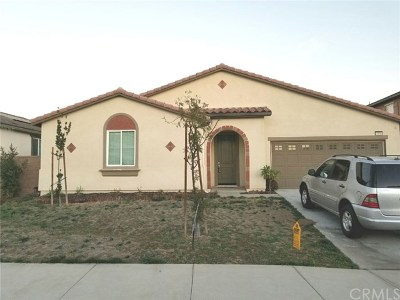 Lake Elsinore Single Family Home For Sale: 53008 Alba Street