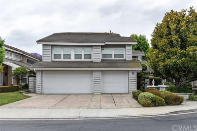 Irvine Single Family Home For Sale: 11 Aldea
