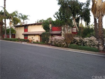 San Pedro Single Family Home For Sale: 1122 Dolores Road