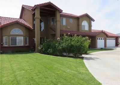 Victorville Single Family Home For Sale: 13650 Hidden Valley Road