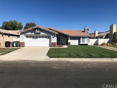Hemet Single Family Home For Sale: 25194 Jutland Drive