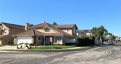Placentia Single Family Home For Sale: 531 Gerhold Lane