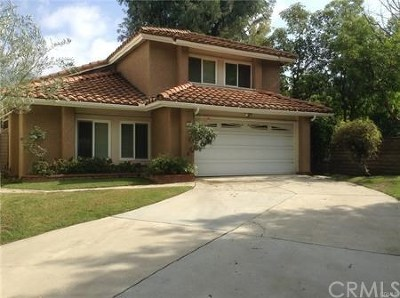 Irvine Single Family Home For Sale: 29 Eden