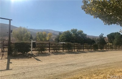 Leona Valley Single Family Home For Sale: 5641 Elizabeth Lake Road