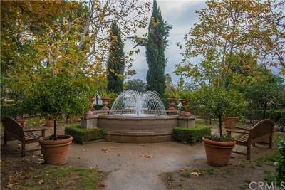 Pasadena Condo/Townhouse For Sale: 433 N Altadena Drive #7