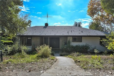Arcadia Single Family Home For Sale: 298 W Foothill Boulevard