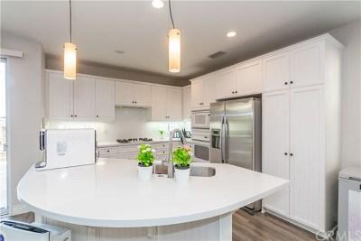 Yorba Linda Single Family Home For Sale: 3615 Vista Vizcaino