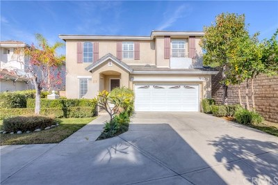 Buena Park Single Family Home For Sale: 27 Bayview Drive
