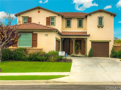 Lake Elsinore Single Family Home For Sale: 35590 Desert Rose Way