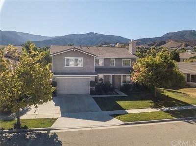 Corona Single Family Home For Sale: 1360 Stein Way
