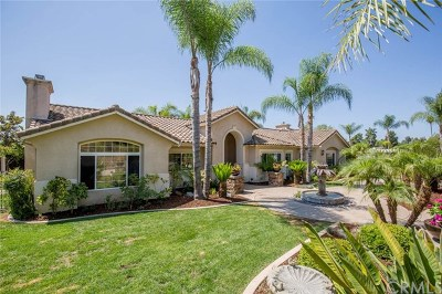 Escondido Single Family Home For Sale: 2131 Gamble Place