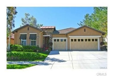 Corona Single Family Home For Sale: 24393 Fawnskin Drive